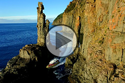 Bruny Island Cruises Video