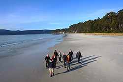 Walking along a Bruny Island Beach