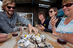 Oysters on Bruny Island Traveller