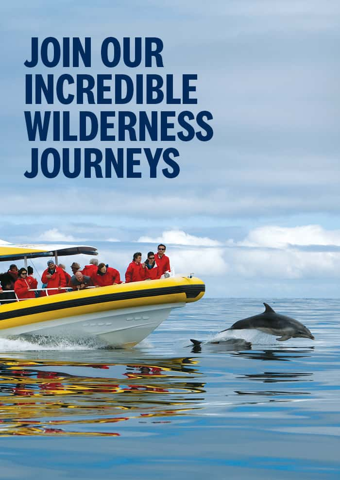 Pennicott Wilderness Journeys - Seven Incredible Wilderness Journeys